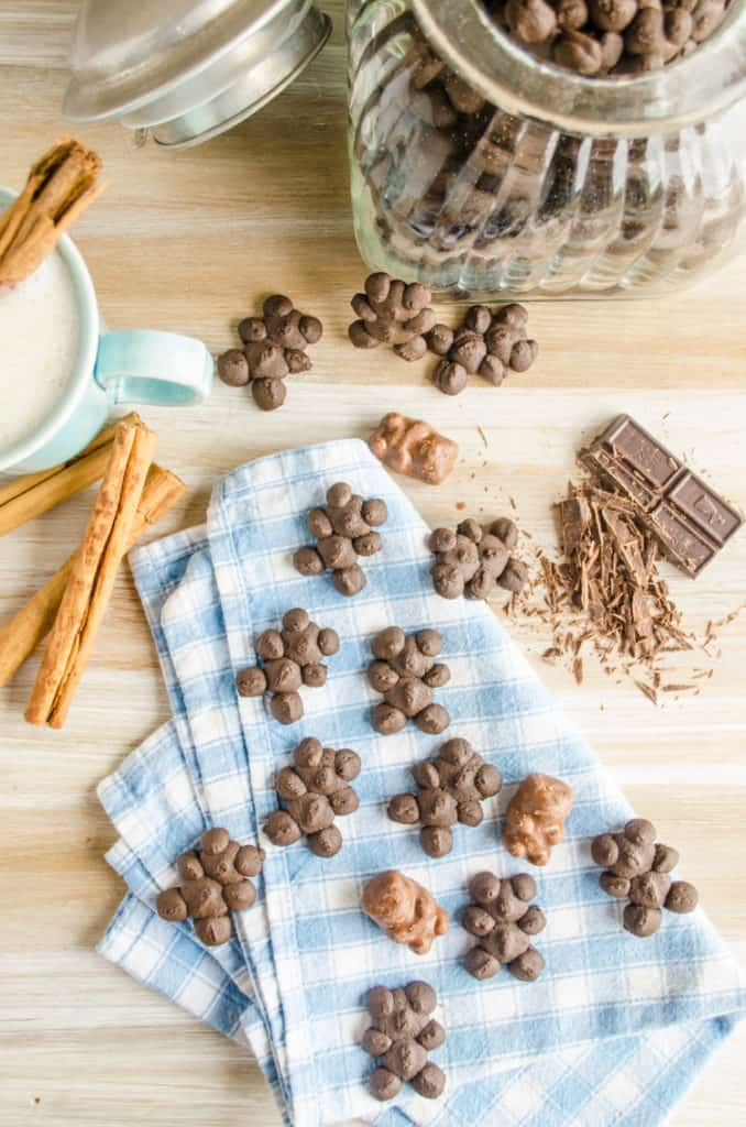 Chocolate Cinnamon Bear Cookies spread out on a blue and white cloth checkered napkin.