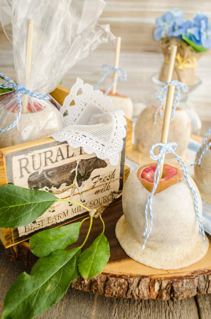 The Best Caramel Apple Recipe apples wrapped in plastic and tied with a bow makes a lovely gift!