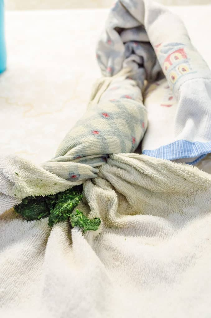Thawed spinach is squeezed of all it's moisture tucked inside a kitchen towel that has been wrung out. For Creamy Stuffed Fish Florentine - The Goldilocks Kitchen