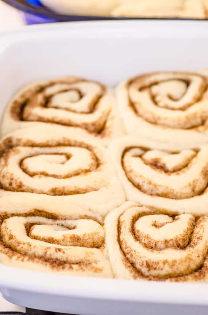 A close up of raw cinnamon rolls that have risen and are ready to be baked into Goldilocks Kitchen Cinnamon Rolls - The Goldilocks Kitchen