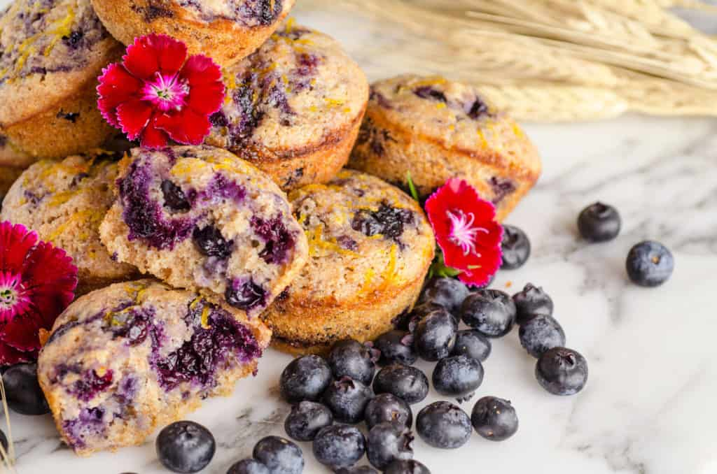 A close up of several Moist Whole Wheat Blueberry Swirl Muffins surrounded by fresh blueberries, wheat stalks and red flowers.