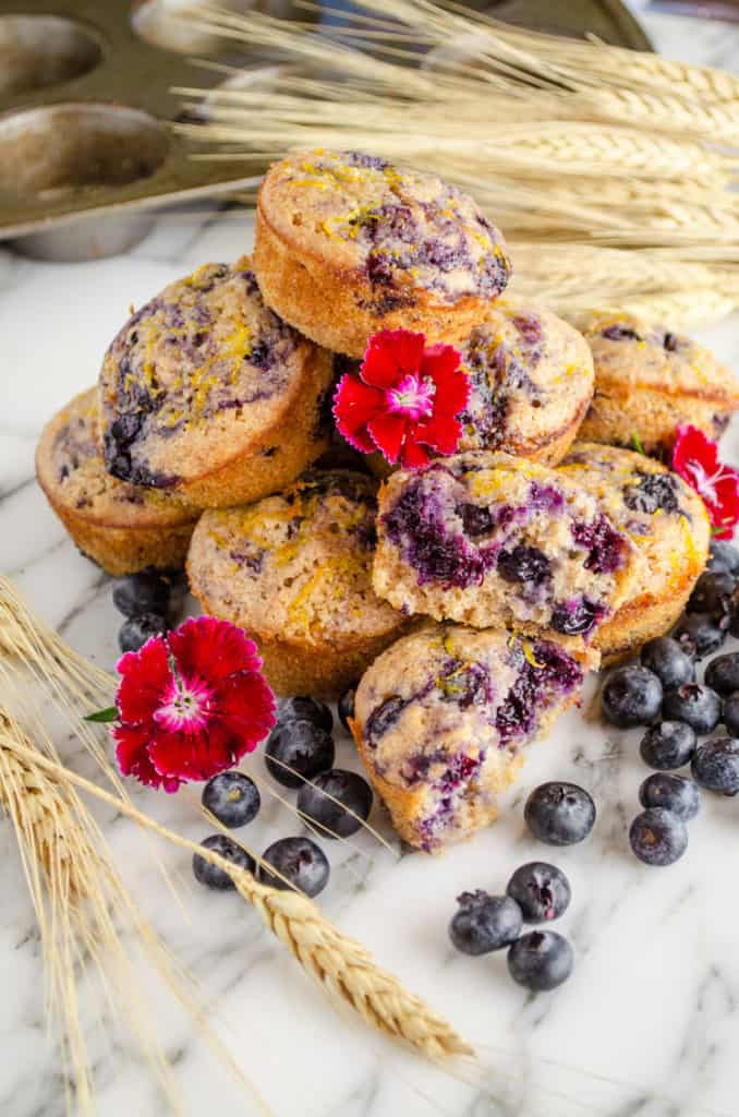 Several Fresh Moist Whole Wheat Blueberry Swirl Muffins are displayed with small red flowers, fresh blueberries and wheat stalks.