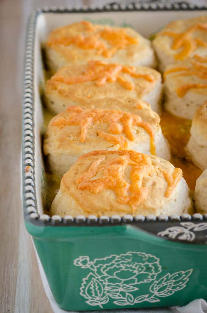 A casserole dish containing a Creamy Chicken Biscuit Bake with golden brown cheesy biscuits on top- The Goldilocks Kitchen