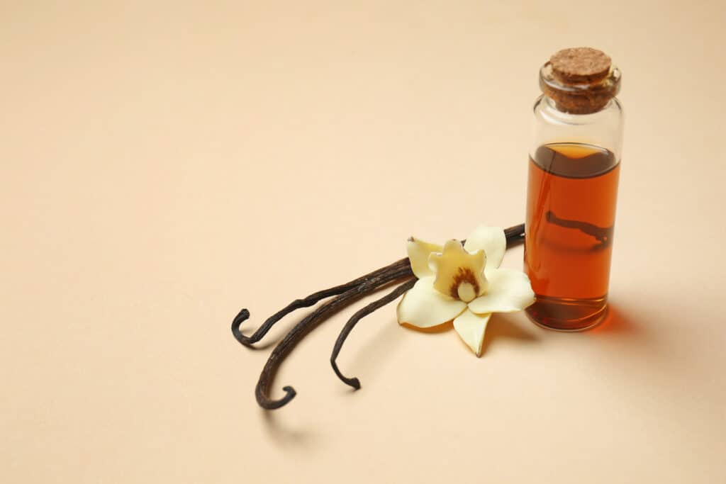 Bottle of vanilla extract on color background