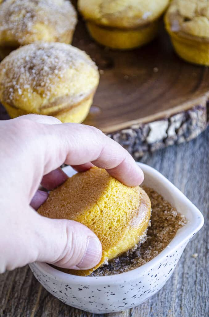 The tops of Snickerdoodle Pumpkin Muffins are pressed into a cinnamon sugar mixture.